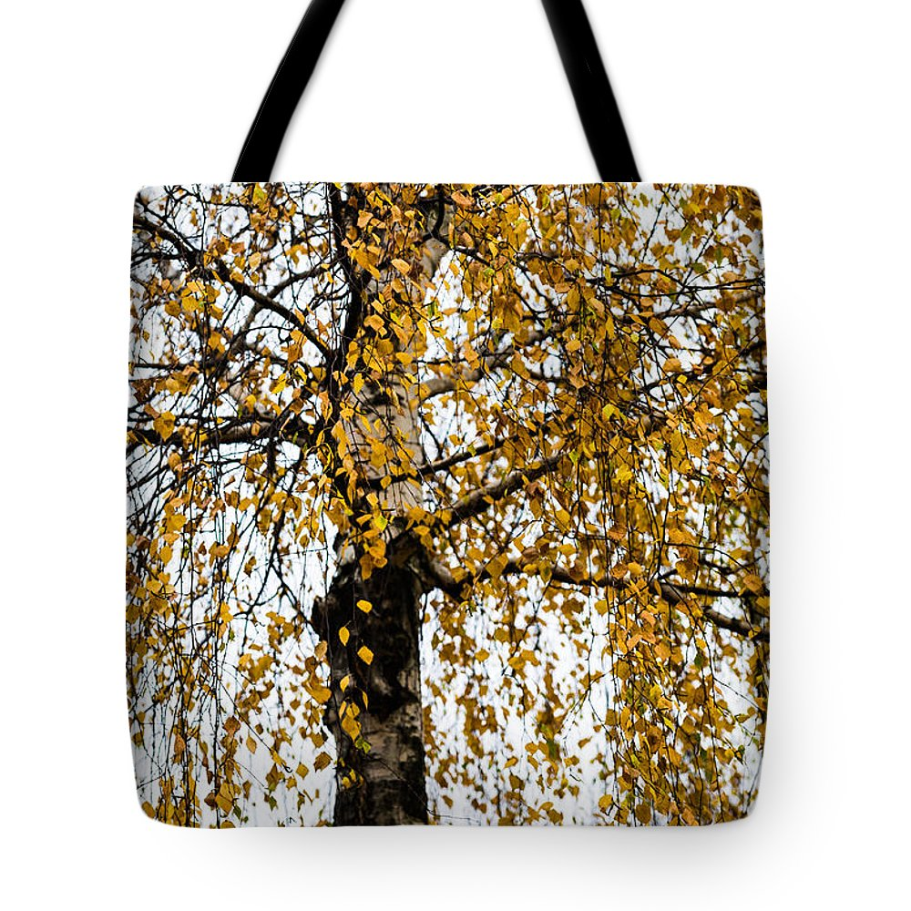 Abstract Tote Bag featuring the photograph Quiet Charm Of Autumn by Alexander Senin