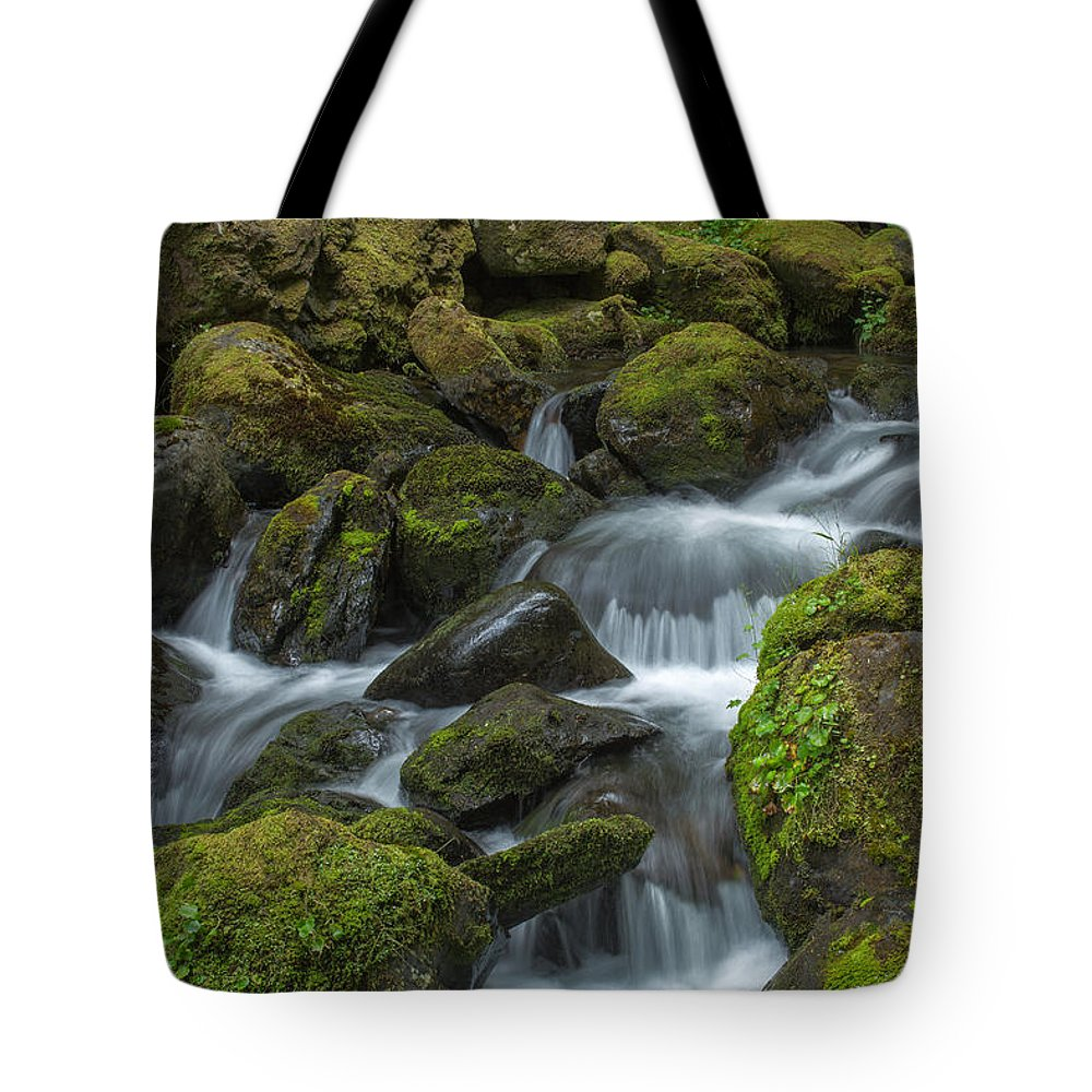 Quinault Tote Bag featuring the photograph Quinault Waterfall by Bob Stevens