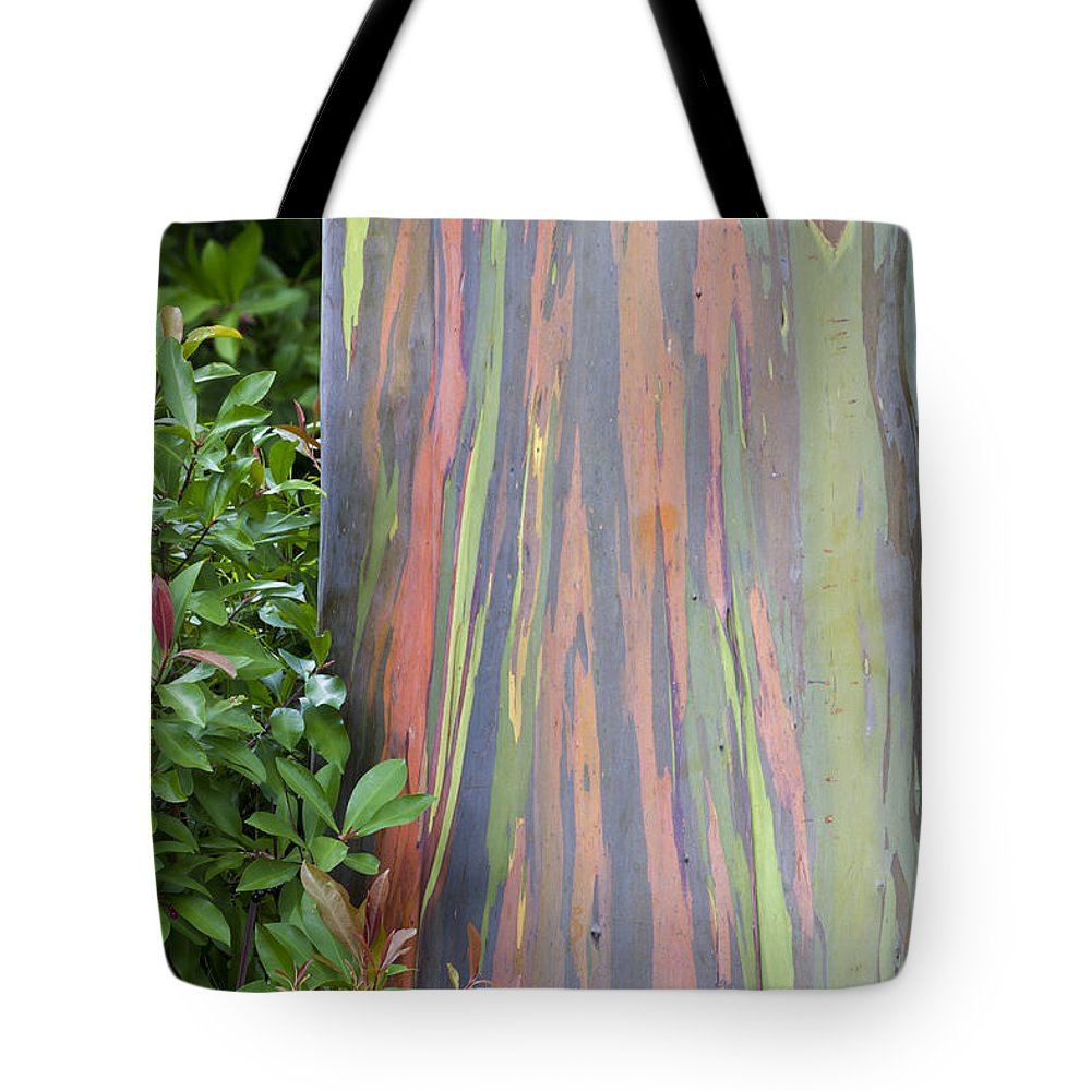 Hawaii Tote Bag featuring the photograph Rainbow Eucalyptus by Bryan Keil