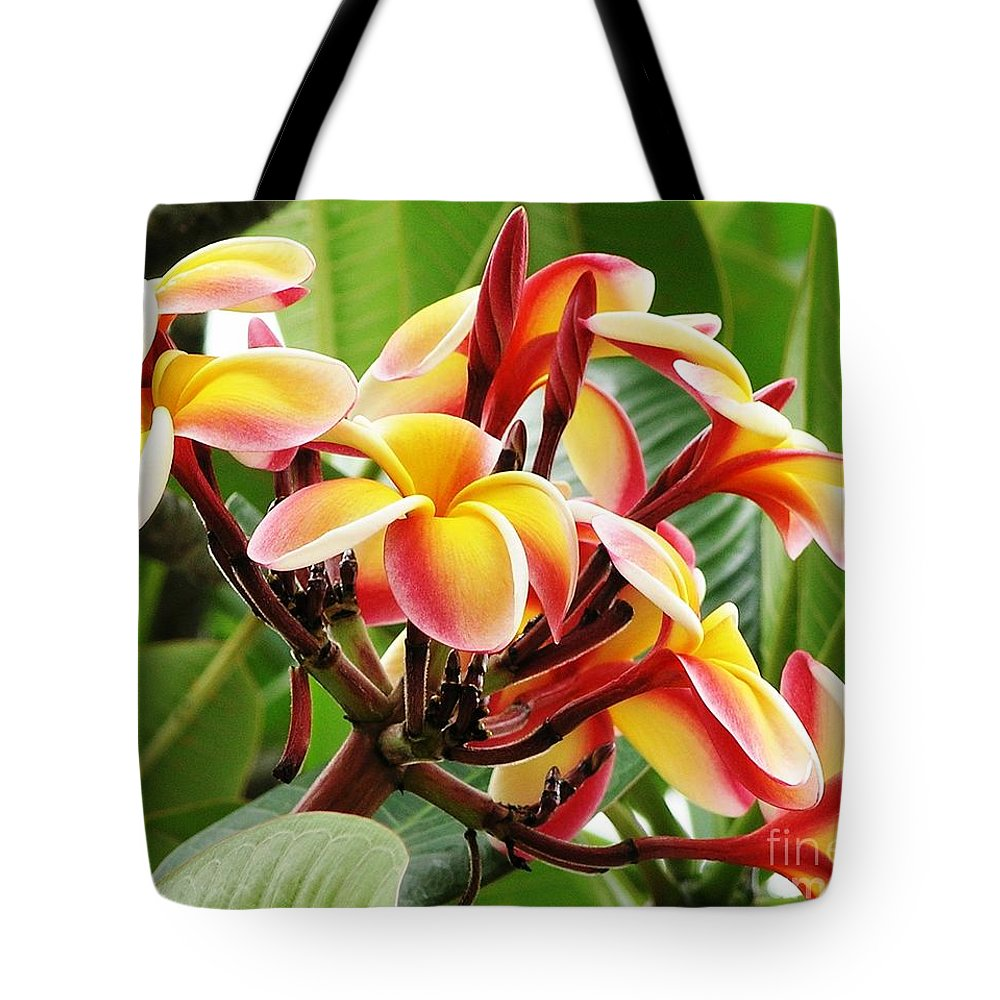 Rainbow Tote Bag featuring the photograph Rainbow Plumeria - 1 by Mary Deal