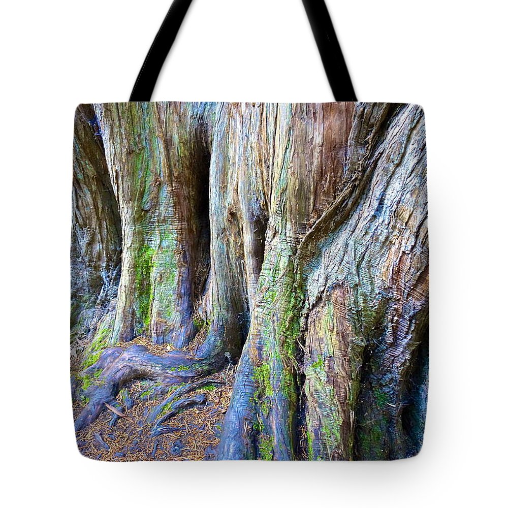 Tree Tote Bag featuring the photograph Rainbow Tree by Charlie Brock