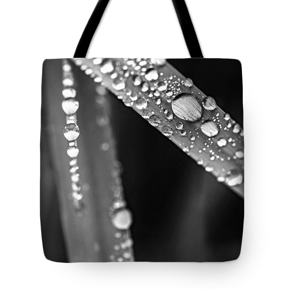 Grass Tote Bag featuring the photograph Raindrops On Grass Blades by Elena Elisseeva