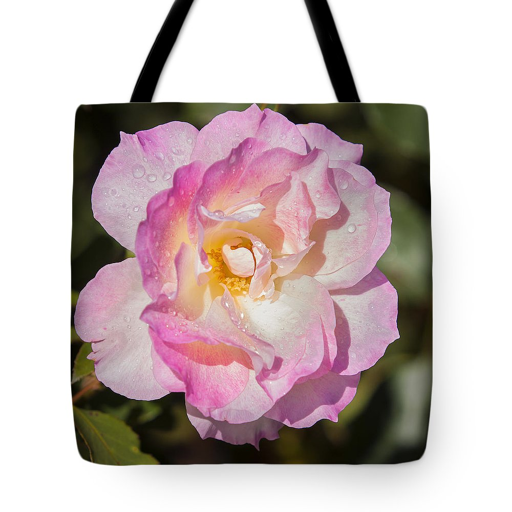 Rose Tote Bag featuring the photograph Raindrops On Rose Petals by Michelle Wrighton