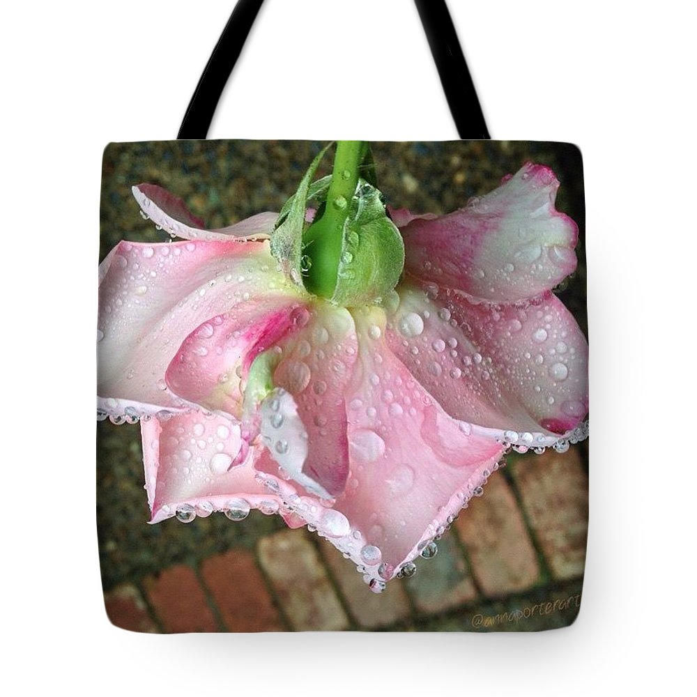 Raindrops On Roses Tote Bag featuring the photograph Raindrops On Roses by Anna Porter