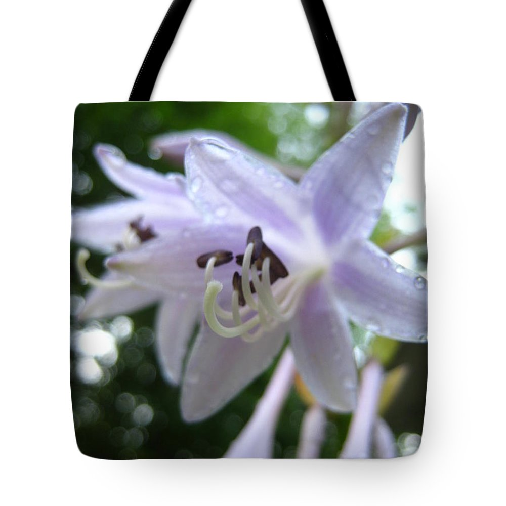 Inspirational Tote Bag featuring the photograph Rainy Day Hasta by Jennifer E Doll