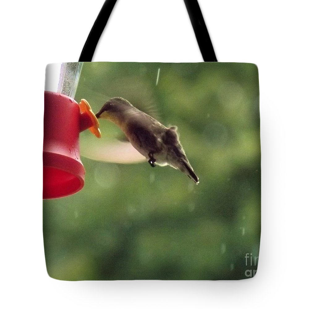 Animals Tote Bag featuring the photograph Rainy Day Treat by Diane Goulart