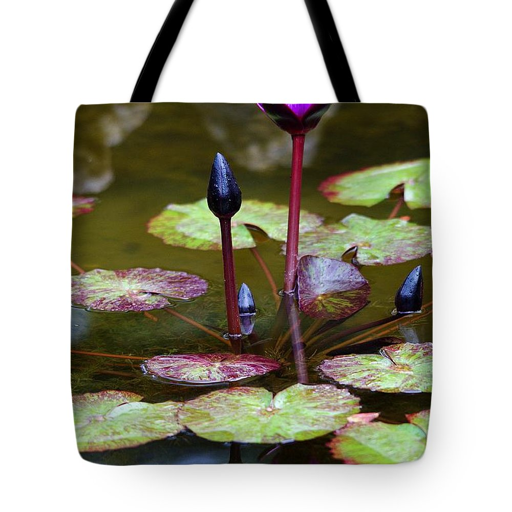 Roy Williams Tote Bag featuring the photograph Rainy Day Water Lily Reflections I by Roy Williams
