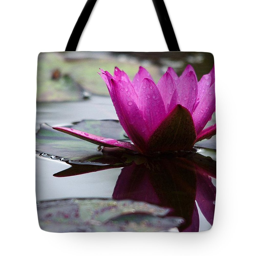 Roy Williams Tote Bag featuring the photograph Rainy Day Water Lily Reflections 6 by Roy Williams