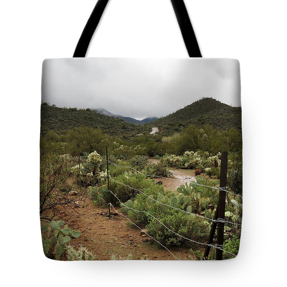 Arizona Tote Bag featuring the photograph Rainy Desert by Laurel Powell