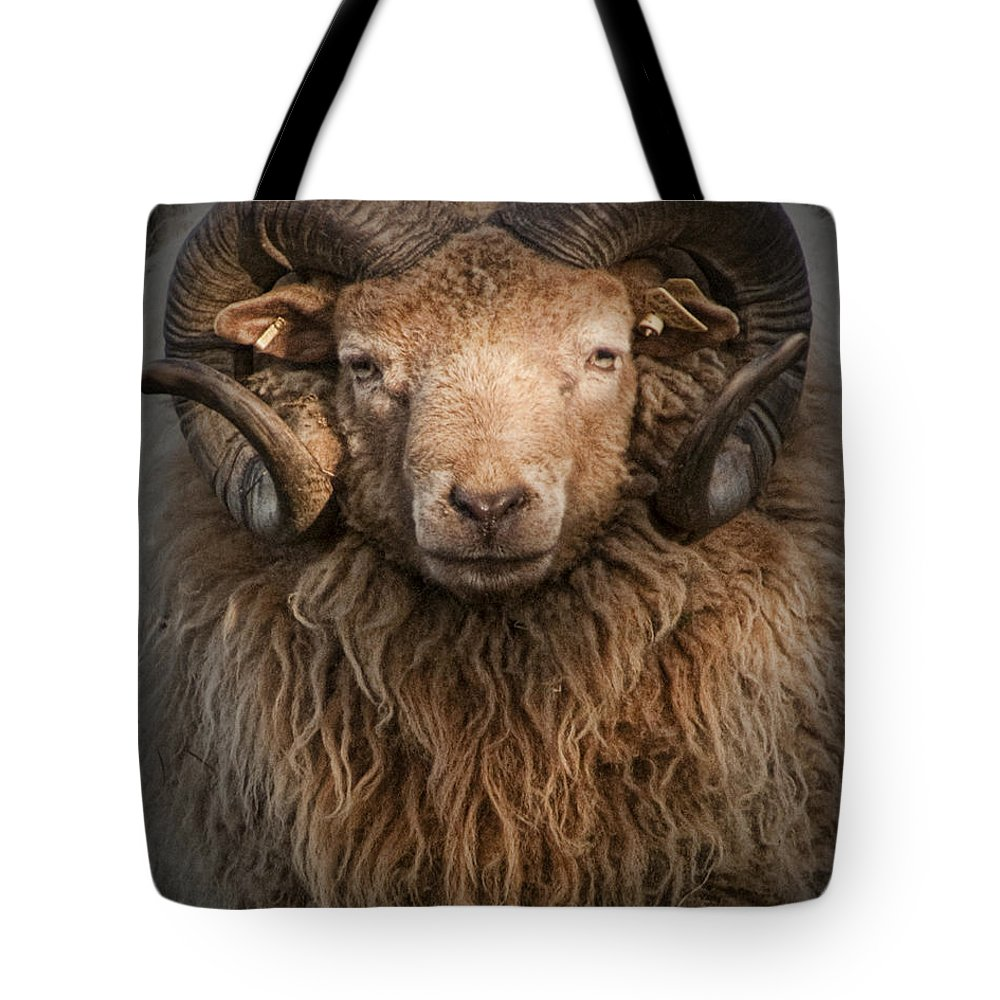 Art Tote Bag featuring the photograph Ram Portrait by Randall Nyhof