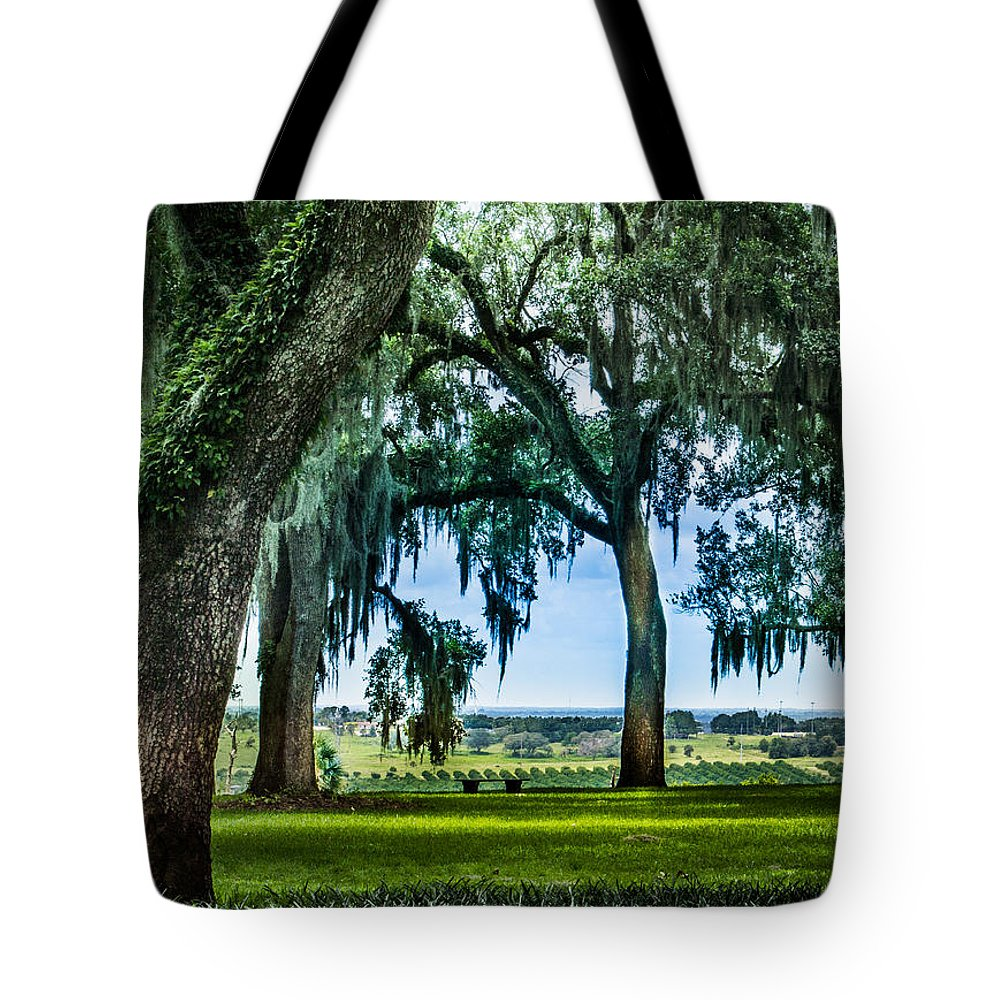 susan Molnar Tote Bag featuring the photograph Rare View From Above by Susan Molnar