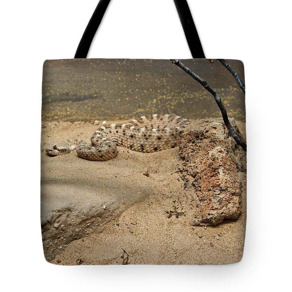 Reptile Tote Bag featuring the photograph Rattlesnake Arizona Desert by Douglas Barnett