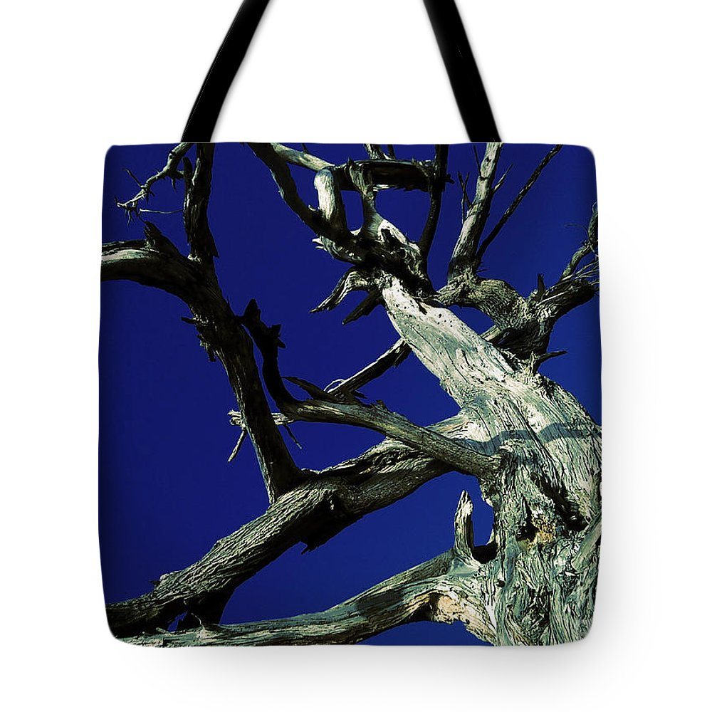 Sky Tote Bag featuring the photograph Reach For The Sky by Janice Westerberg