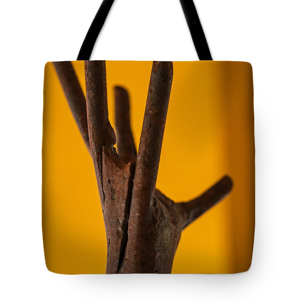 Hand Tote Bag featuring the photograph Reach by Scott Campbell