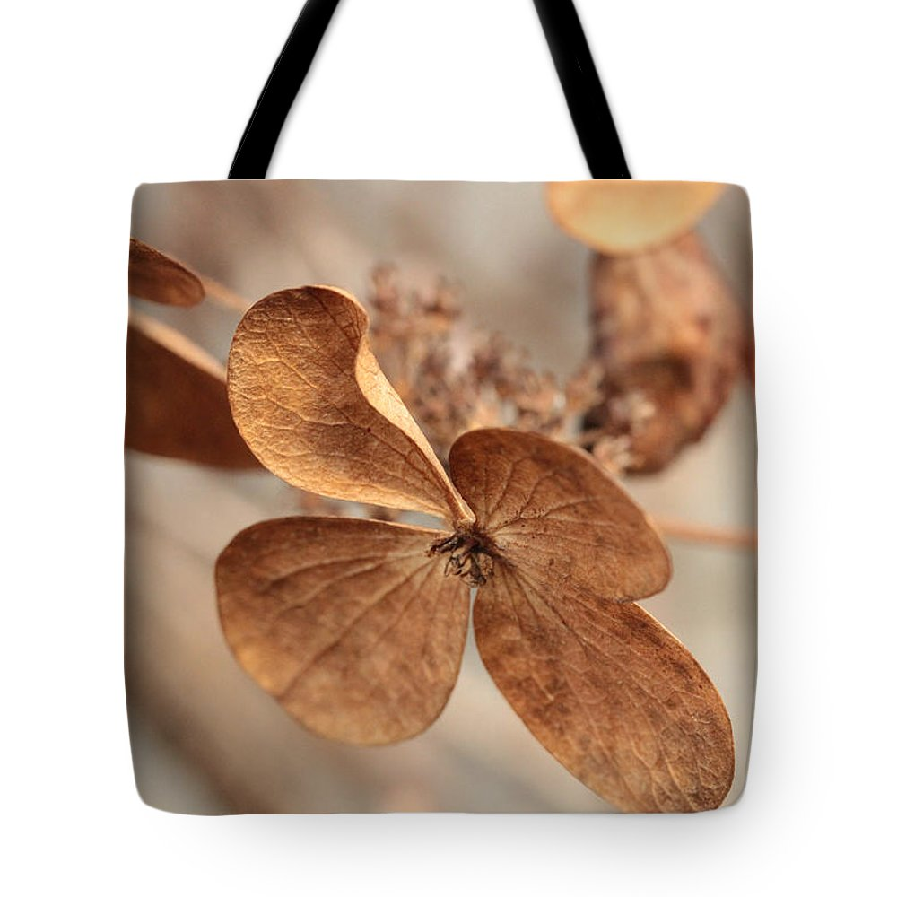 Hydrangea Tote Bag featuring the photograph Ready For Takeoff by Connie Handscomb
