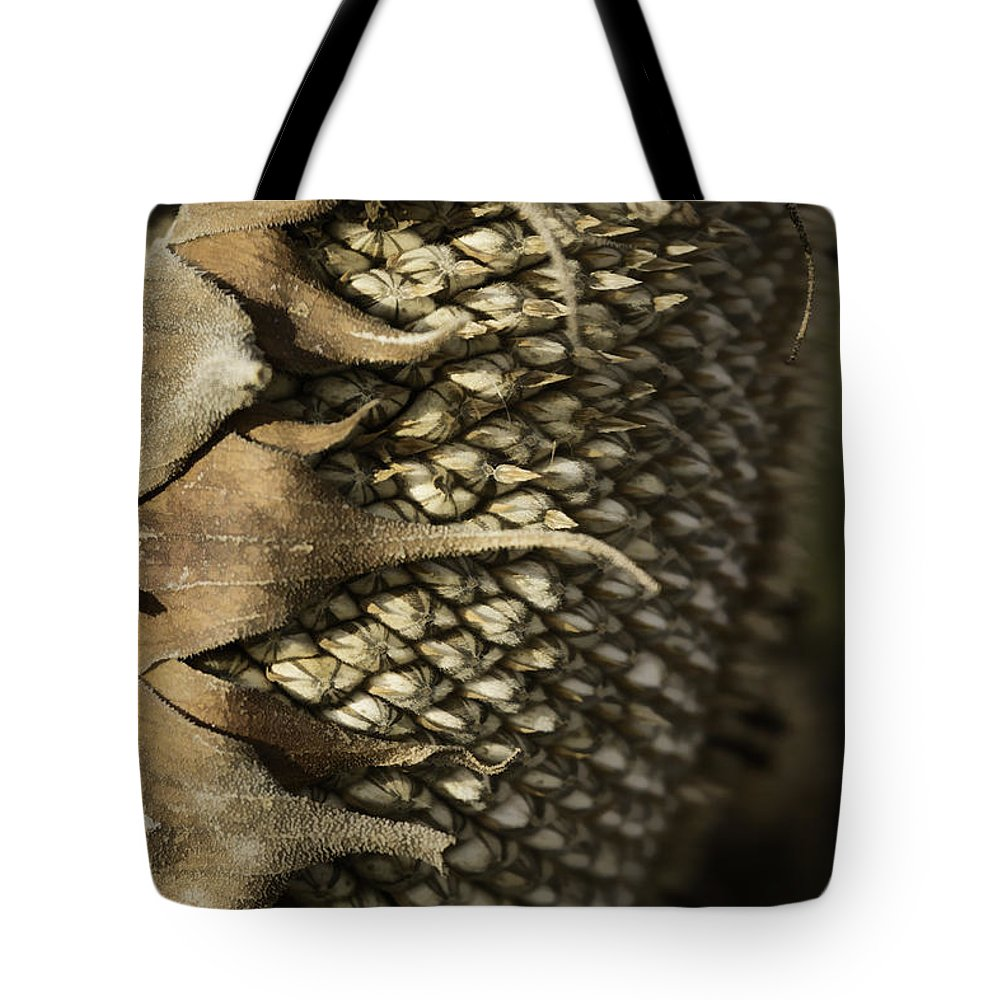 Sunflower Head Tote Bag featuring the photograph Ready For Winter by Thomas Young