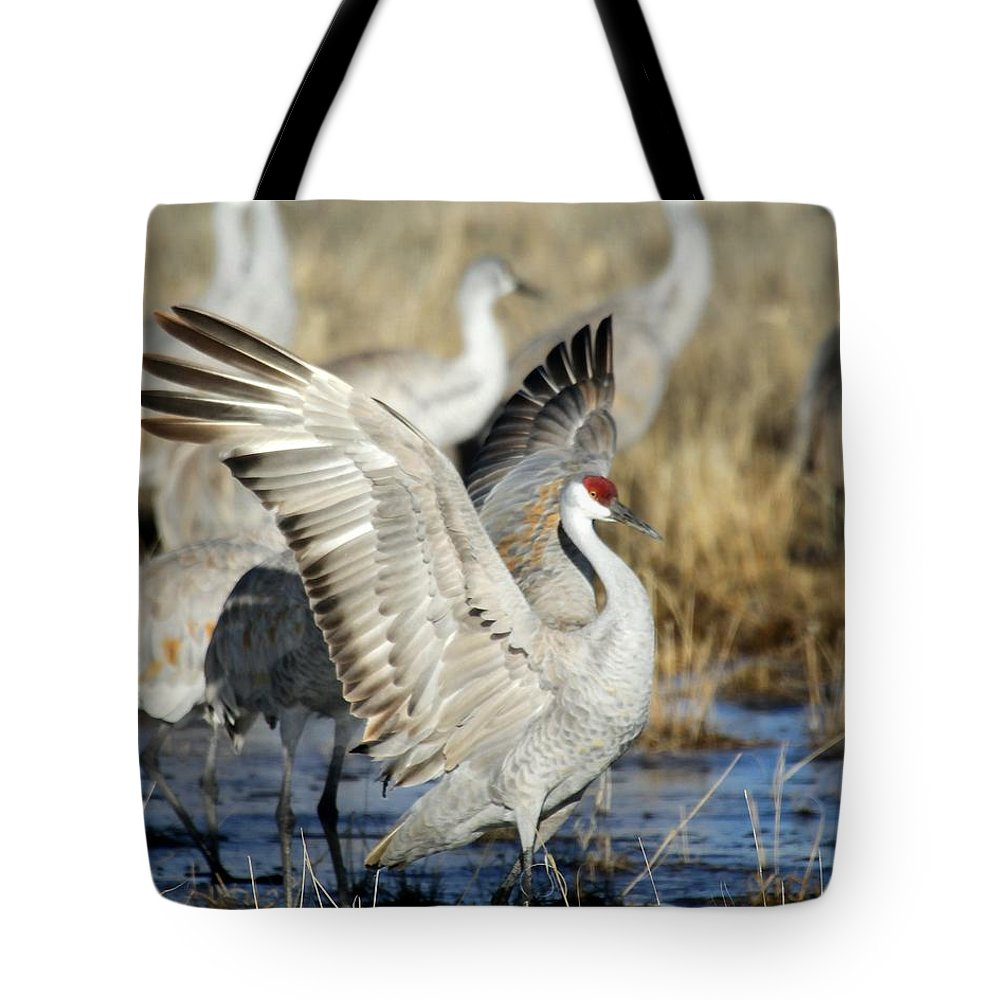Bird Tote Bag featuring the photograph Ready To Fly by Sabrina L Ryan