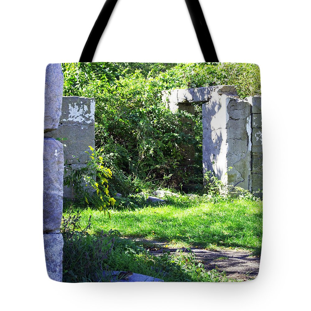 Wood Tote Bag featuring the photograph Reclamation by Joe Geraci