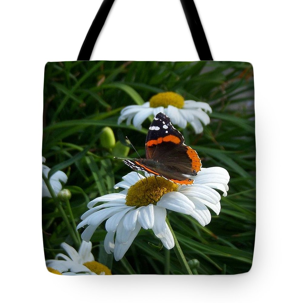 Red Admiral Butterfly Tote Bag featuring the photograph Red Admiral On A Daisy by Terri Waselchuk
