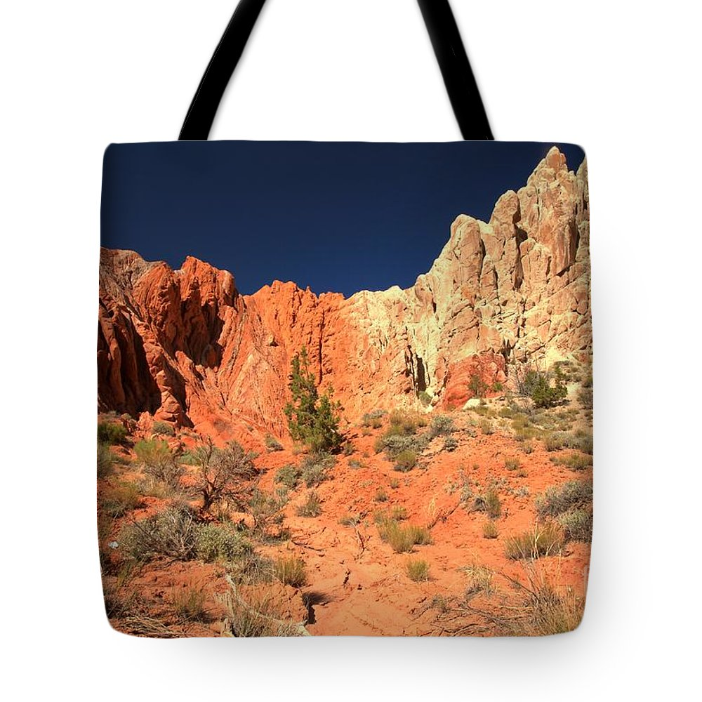 Cottonwood Road Tote Bag featuring the photograph Red And White Caps by Adam Jewell