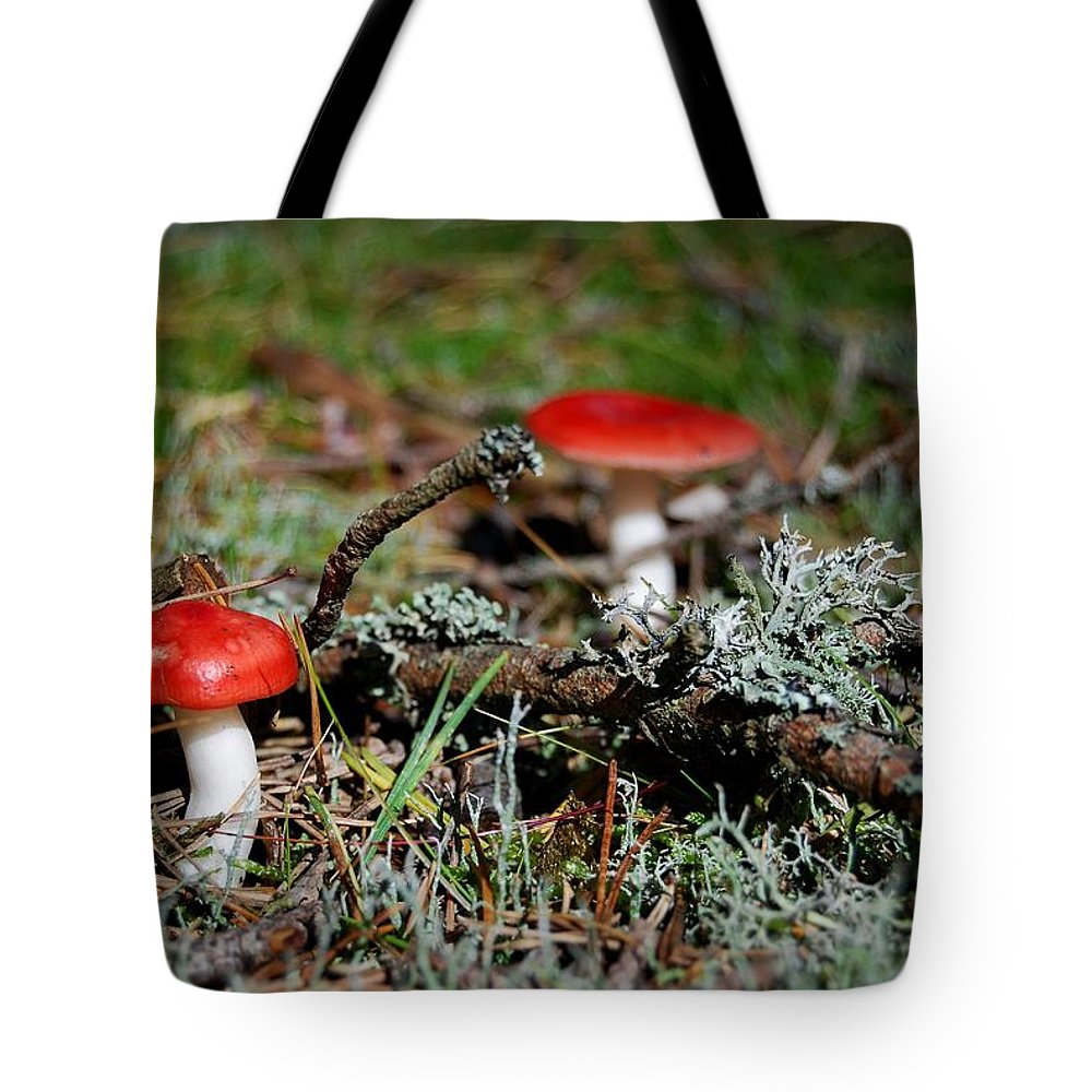 Amanita Tote Bag featuring the photograph Red And White Mushrooms by Sonya Kanelstrand