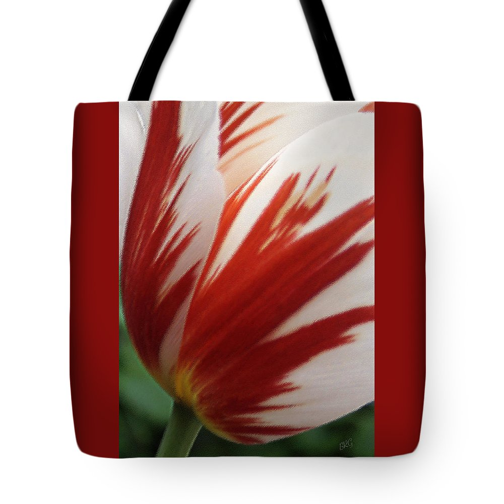Tulip Tote Bag featuring the photograph Red And White Tulip by Ben and Raisa Gertsberg