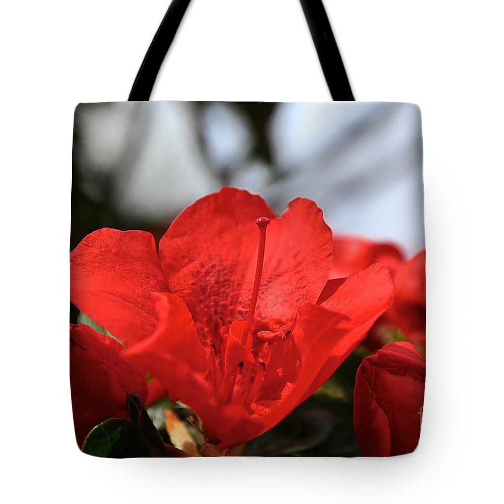 Flower Tote Bag featuring the photograph Red April by Susan Herber