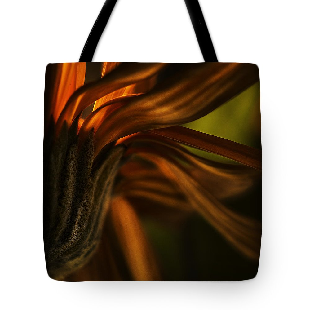 Nature Tote Bag featuring the photograph Red Autumn Blossom Detail by Peter v Quenter