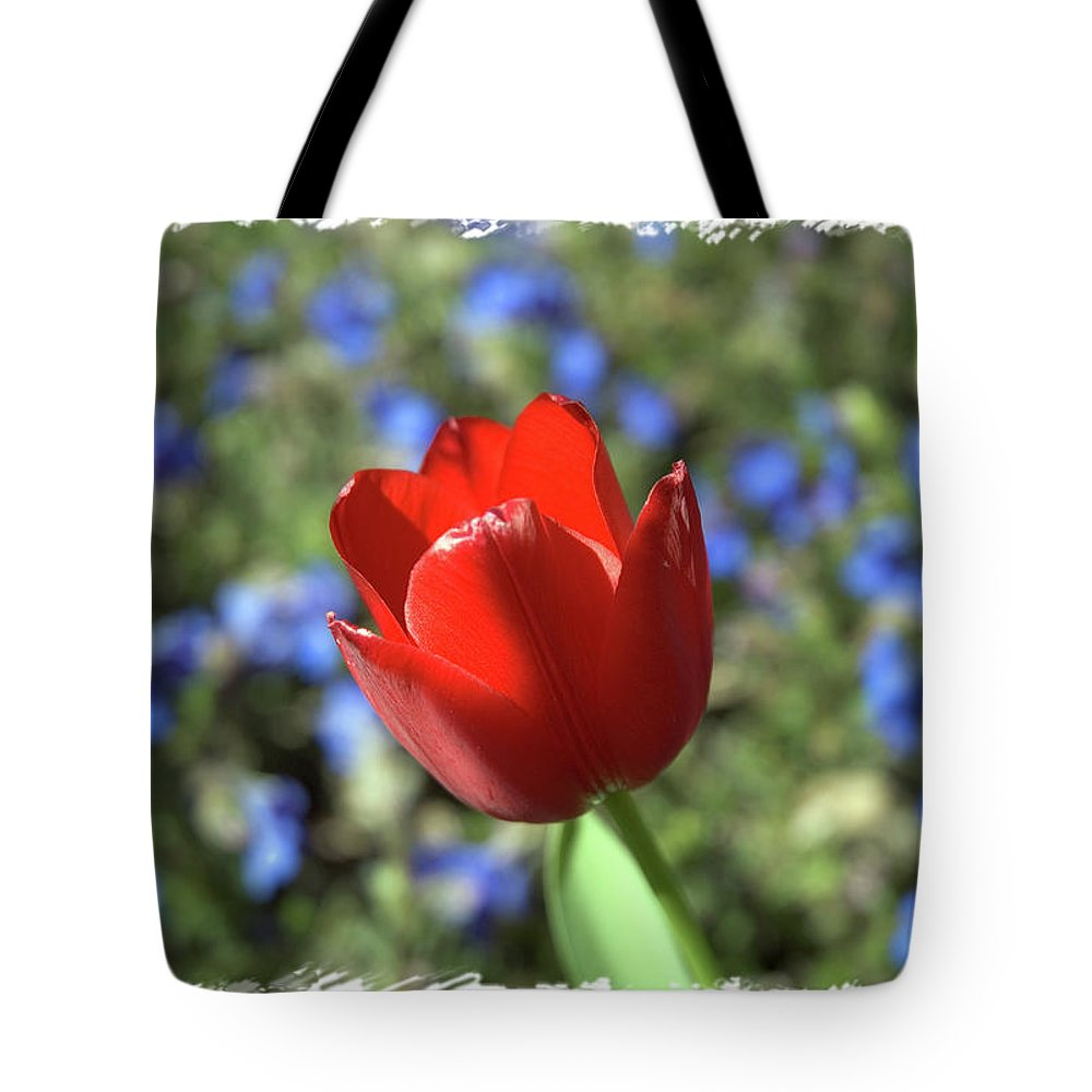 Flower Tote Bag featuring the photograph Red Baby by Arthur Fix