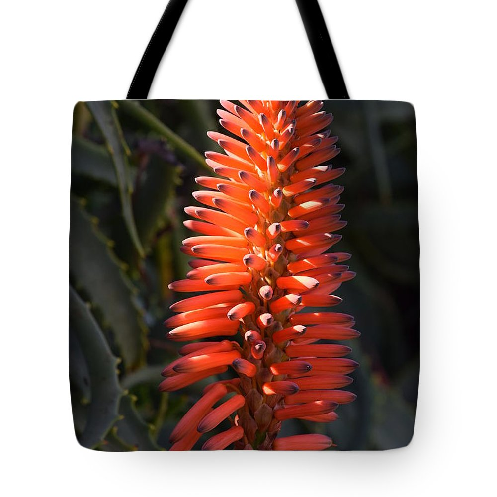 Flower Tote Bag featuring the photograph Red Beauty by Eric Johansen