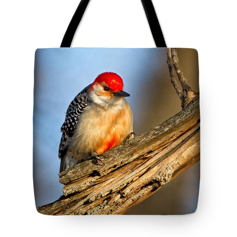 Award Winning Tote Bag featuring the photograph Red-bellied Woodpecker by Ronald Lutz