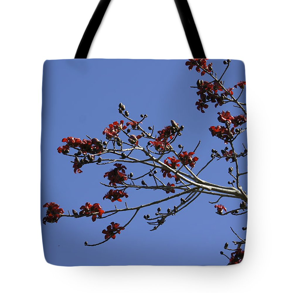 Red Flowers Tote Bag featuring the photograph Red Blossoms by Laurie Perry