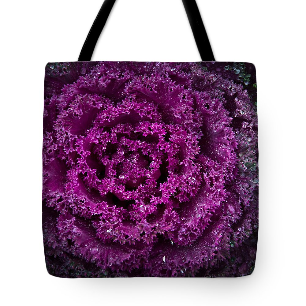 Tote Bag featuring the photograph Red Cabbage by Cindy Tiefenbrunn