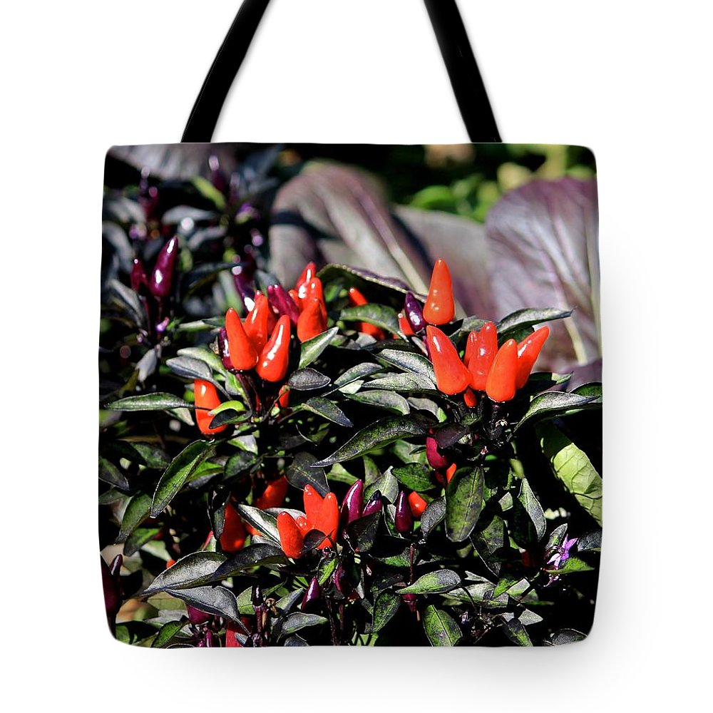 Red Chili Peppers Tote Bag featuring the photograph Red Chili Peppers by Michael Saunders