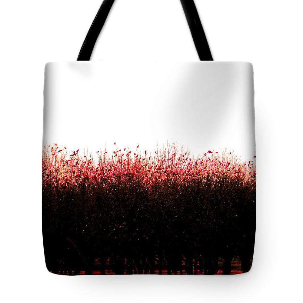 Red Tote Bag featuring the photograph Red Dawn by M Pace