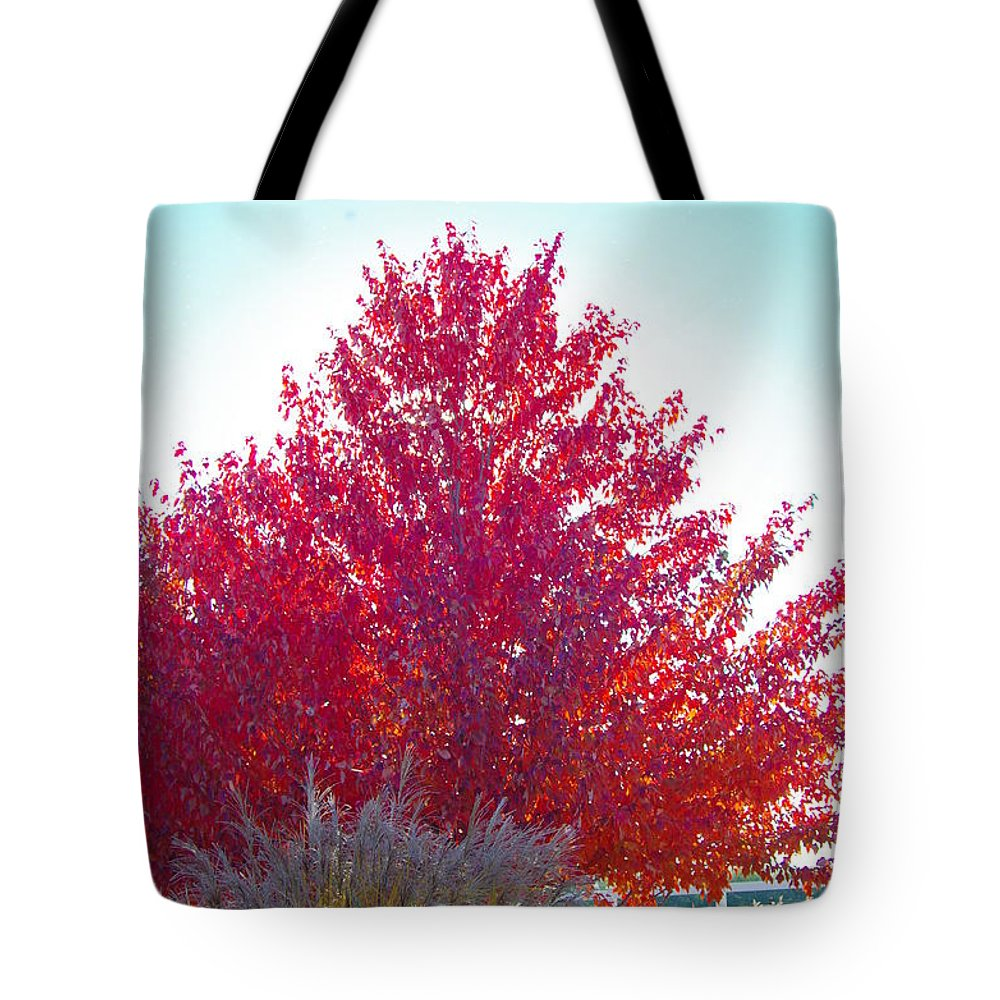 Fall Tree Colors Tote Bag featuring the photograph Red Explosion by Mike Wheeler