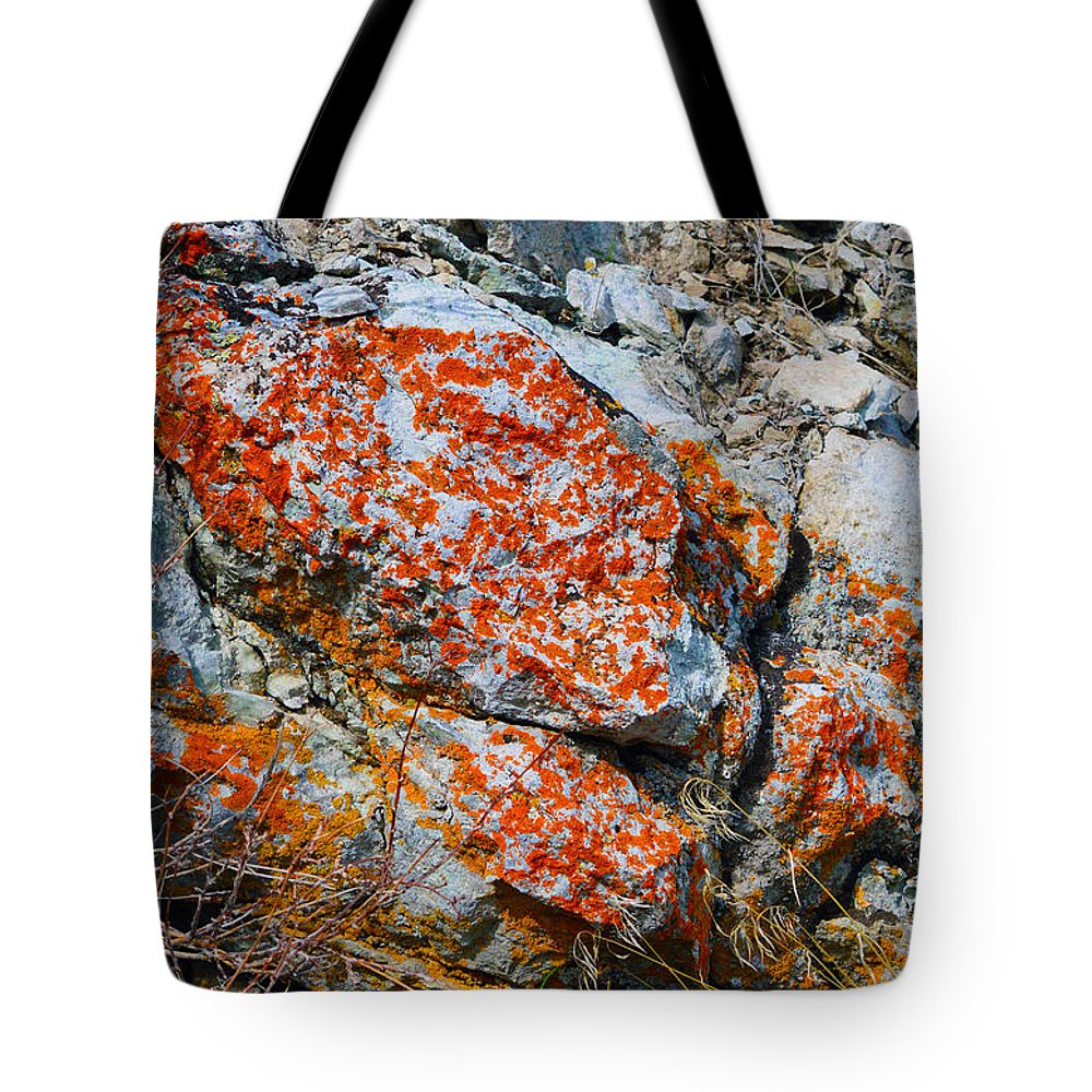 Hunter Creek Trail Tote Bag featuring the photograph Red Growth Rock by Brent Dolliver