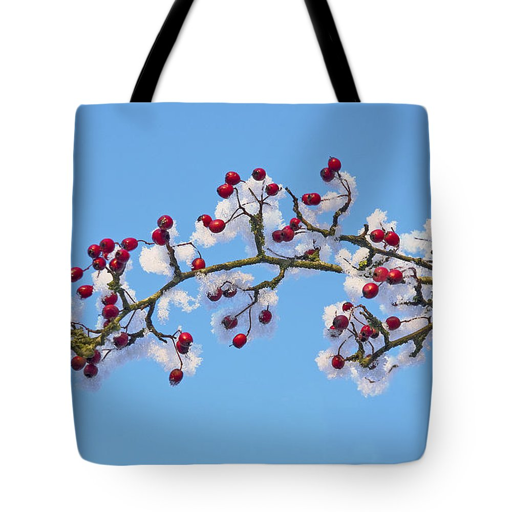Berries Tote Bag featuring the photograph Red Haws Frosted By Snow by Liz Leyden