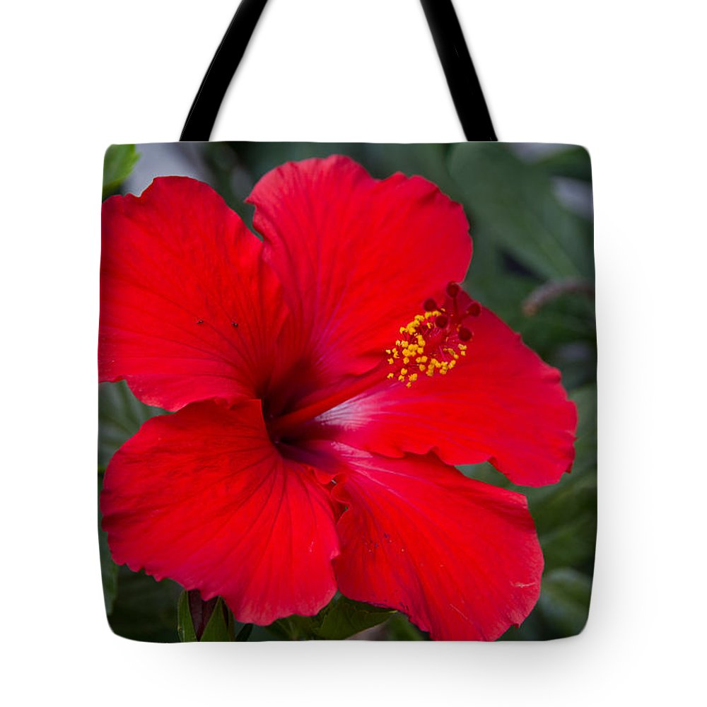 Flower Tote Bag featuring the photograph Red Hibiscus by Tim Stanley