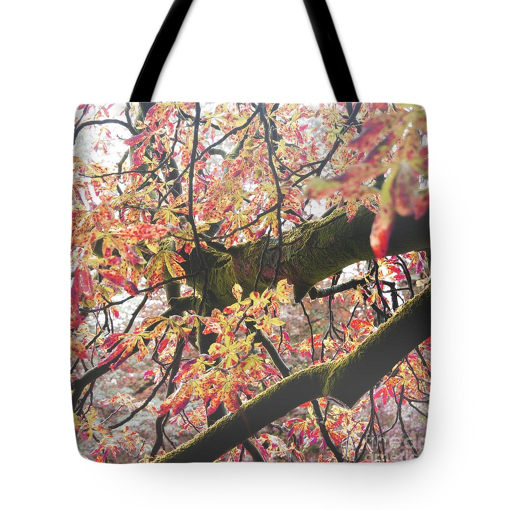 Photography Tote Bag featuring the photograph Red Leaves by Ivy Ho