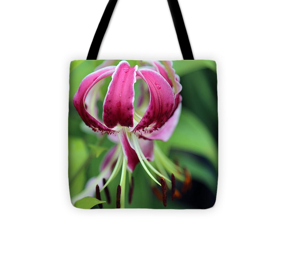 Red Lilly Tote Bag featuring the photograph Red Lilly by Dwight Cook