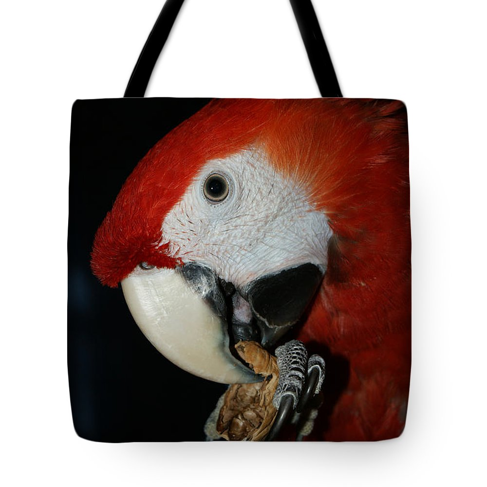 Red Macaw Tote Bag featuring the photograph Red Macaw by Ernie Echols