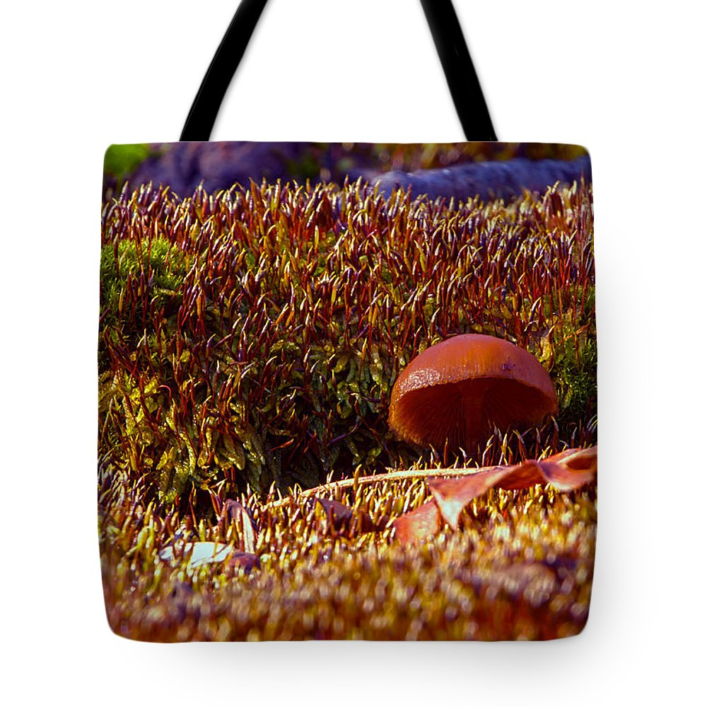 Cabin Photographs Tote Bag featuring the photograph Red Mushroom Inn by Thomas Sellberg