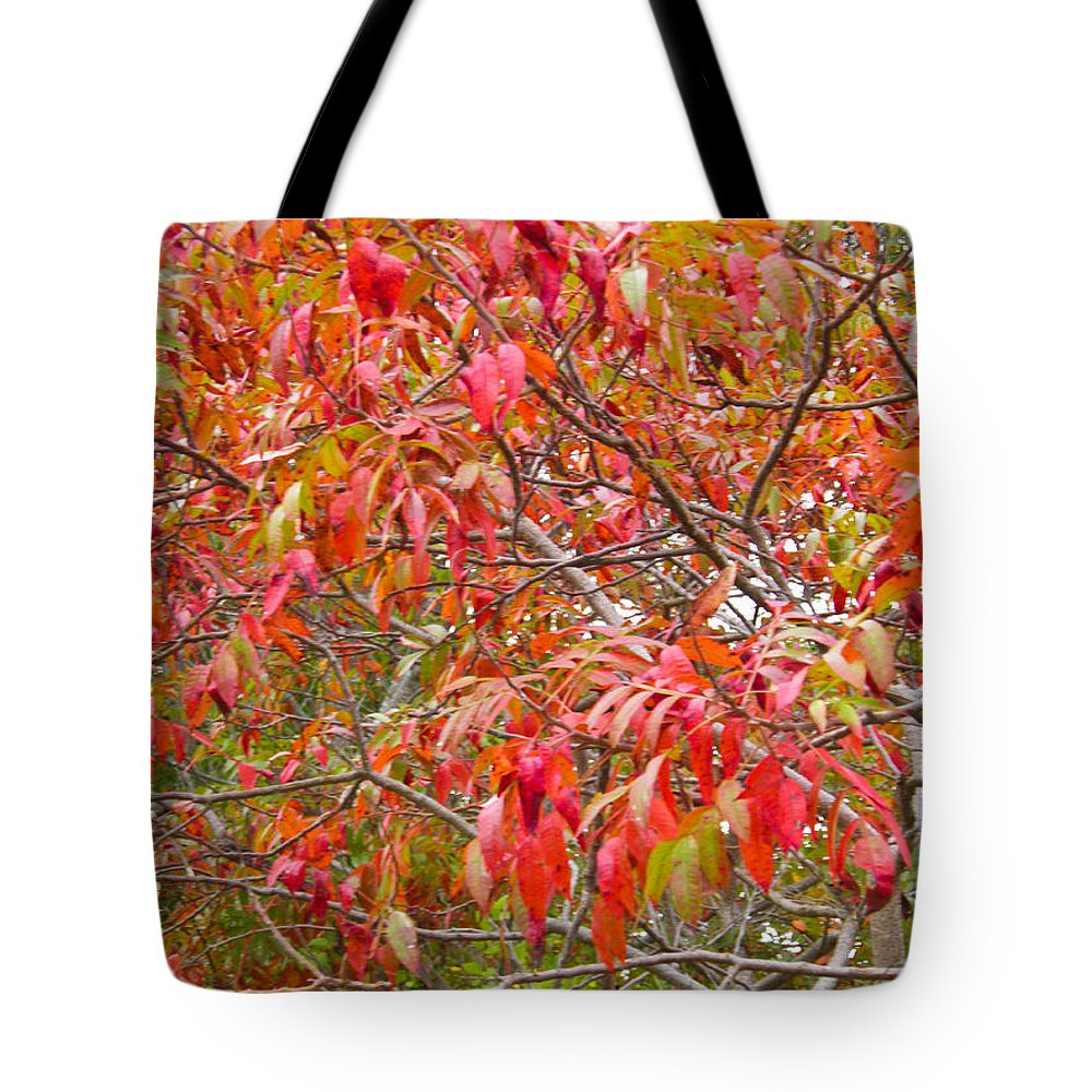 Red Tote Bag featuring the photograph Red by Nick Kirby