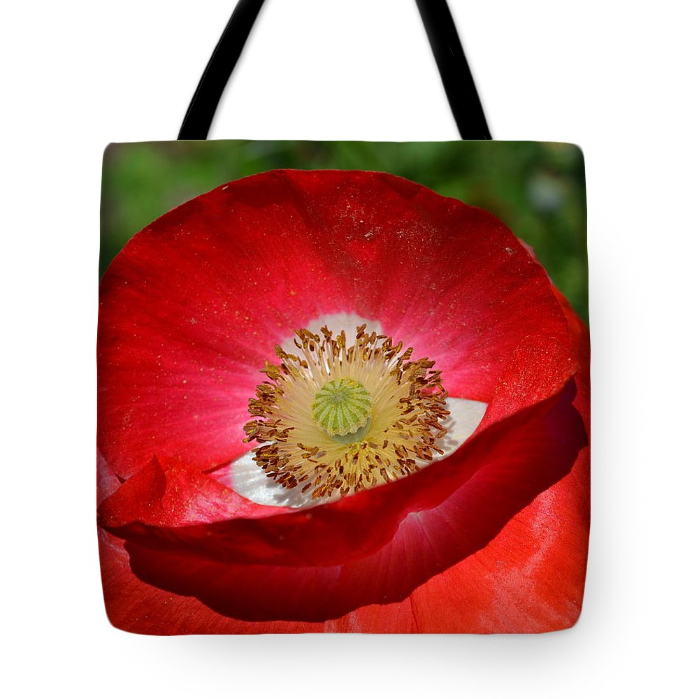 Poppy Tote Bag featuring the photograph Red Poppy 3 by Katy Hawk