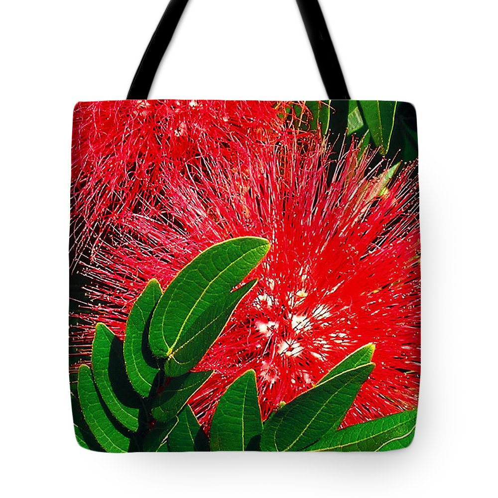 Red Powder Puff Tote Bag featuring the photograph Red Powder Puff by James Temple