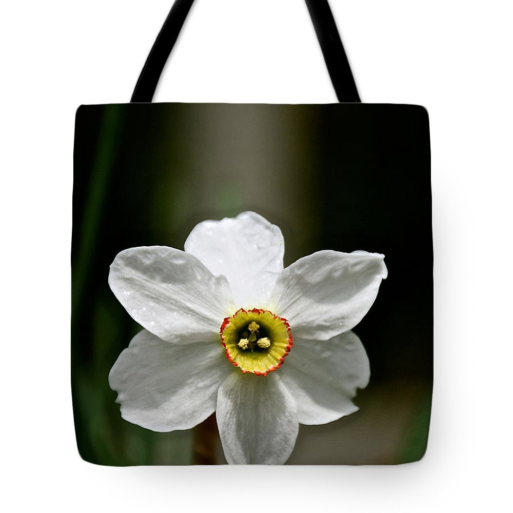 Flower Tote Bag featuring the photograph Red Rim by Susan Herber