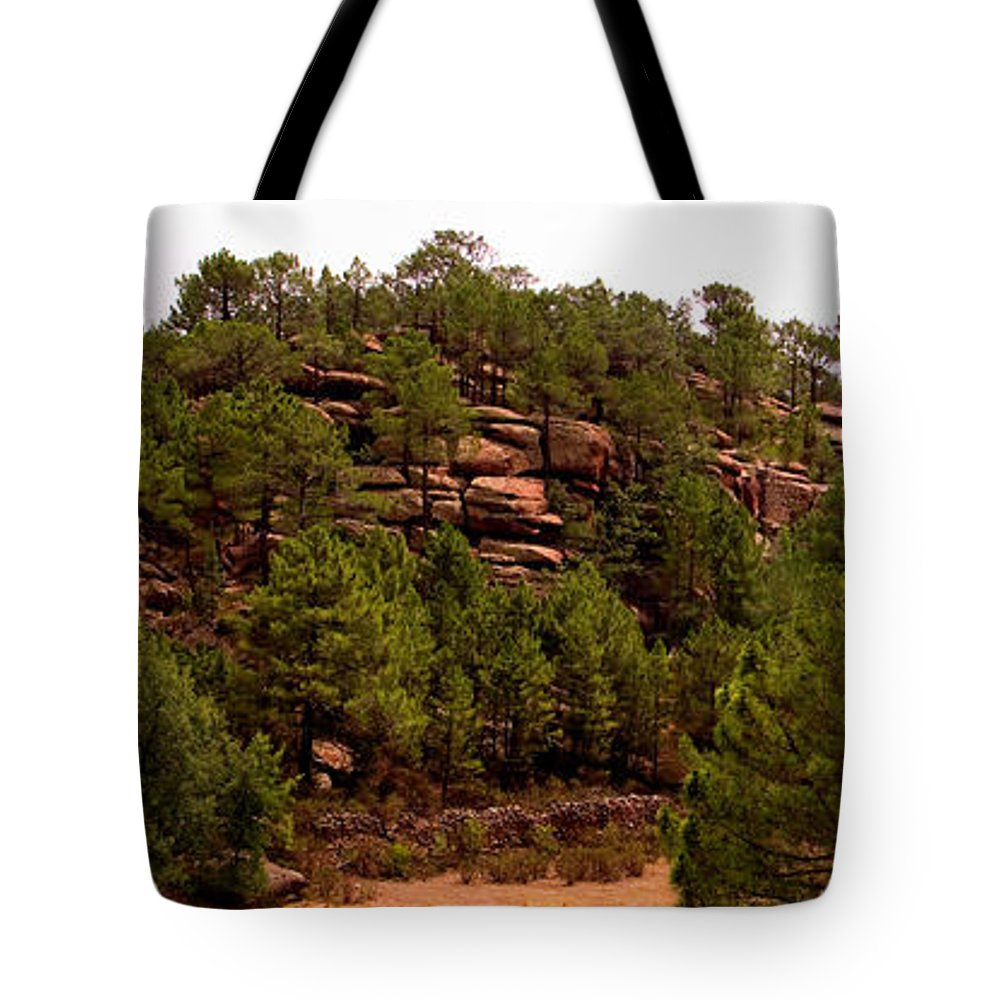 Red Rock Tote Bag featuring the photograph Red Rock Green Forest No3 by Weston Westmoreland