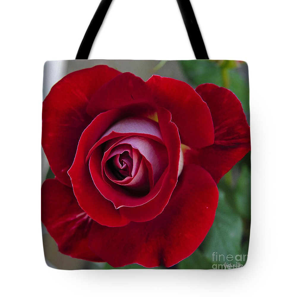 Red Rose Flower Tote Bag featuring the photograph Red Rose Flower by Yefim Bam