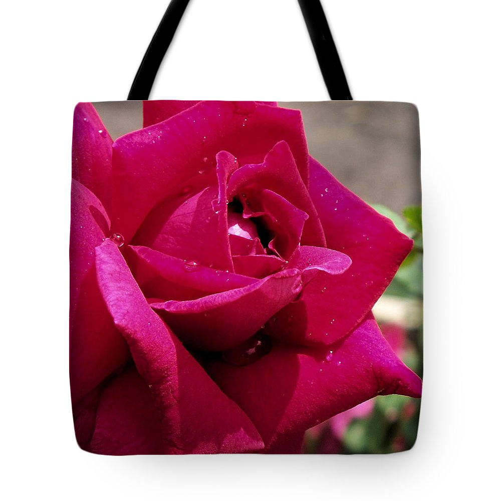 Red Tote Bag featuring the photograph Red Rose Up Close by Thomas Woolworth